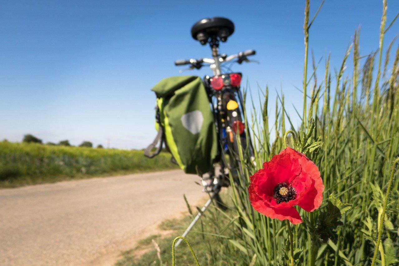 Aktywny wypoczynek na rowerze